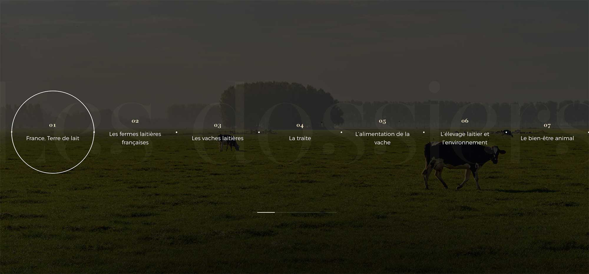 Background image of the post header